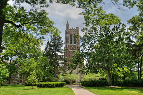 Michigan State University Best INTP Schools